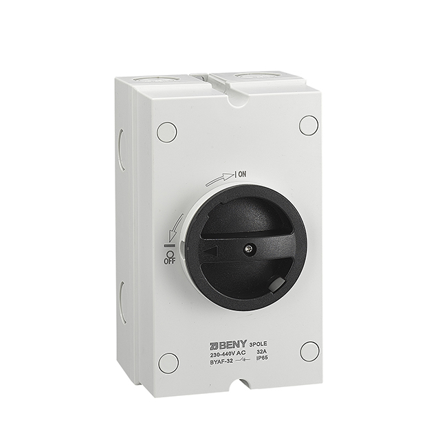 AC Isolator BYAF-63 IP65 63A